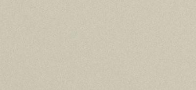 Сайдинг фиброцементный Cedral Click Smooth цвета C08 березовая роща с гладкой фактурой