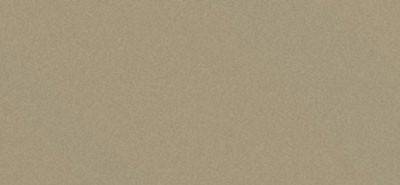 Сайдинг фиброцементный Cedral Click Smooth цвета C03 белый песок, гладкий